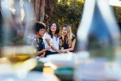 Amis ayant des boissons ensemble à la partie extérieure Photographie stock