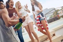 Amis ayant faire la fête sur le dessus de toit Photos libres de droits