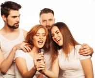 Amis ayant l'amusement au karaoke Photographie stock libre de droits