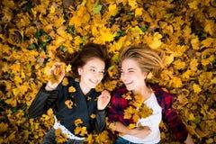 Amis ayant l'amusement dans des feuilles Image stock