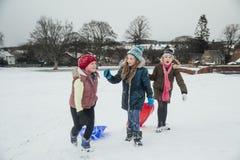 Amis ayant l'amusement dans la neige Images stock