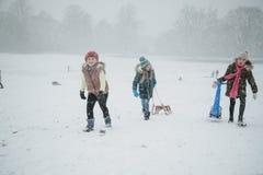 Amis ayant l'amusement dans la neige Photographie stock libre de droits
