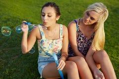 Amis ayant l'amusement dans le parc Photo libre de droits