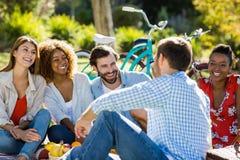 Amis ayant l'amusement dans le parc Image libre de droits