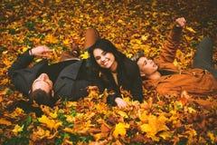 Amis ayant l'amusement dans le parc d'automne Images stock