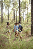 Amis ayant l'amusement dans une forêt Photographie stock