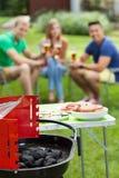 Amis ayant la réception en plein air Image stock