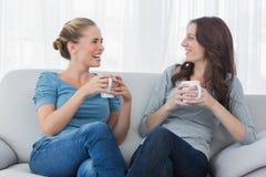 Amis ayant le café et regardant l'un l'autre Images stock