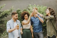 Amis ayant le pain grillé extérieur de réception en plein air avec le cidre alcoolique d Image stock