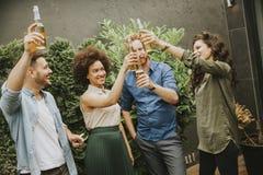 Amis ayant le pain grillé extérieur de réception en plein air avec le cidre alcoolique d Photographie stock