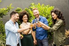 Amis ayant le pain grillé extérieur de réception en plein air avec le cidre alcoolique d Photos stock