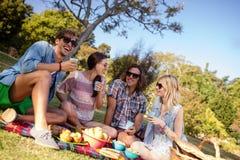 Amis ayant le pique-nique dans le parc Image libre de droits