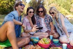Amis ayant le pique-nique dans le parc Photographie stock libre de droits