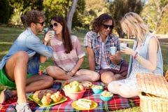 Amis ayant le pique-nique dans le parc Images libres de droits