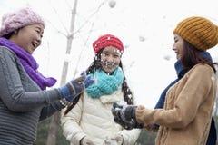 Amis ayant un combat et rire de Snowball Image stock