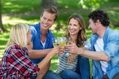 Amis ayant un pique-nique avec du vin Photographie stock