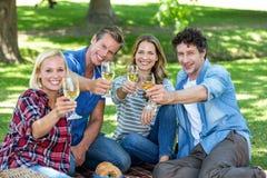 Amis ayant un pique-nique avec du vin Photos libres de droits