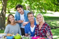 Amis ayant un pique-nique avec du vin Photographie stock libre de droits
