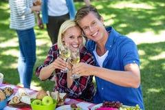 Amis ayant un pique-nique avec du vin Photo stock