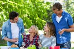 Amis ayant un pique-nique avec du vin Images stock