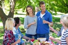 Amis ayant un pique-nique avec du vin Image stock