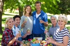 Amis ayant un pique-nique avec du vin Image libre de droits