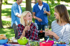 Amis ayant un pique-nique avec du vin et le barbecue Photographie stock