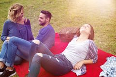 Amis ayant un pique-nique et appréciant le soleil Image libre de droits