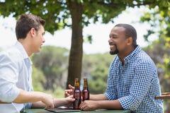 Amis ayant une conversation tout en ayant la bière Photographie stock libre de droits