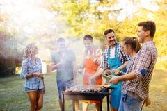 Amis ayant une partie de barbecue en nature Photos stock