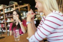 Amis bavardant et causant en café Image stock