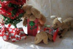 Amis bourrés et l'arbre de Noël Photographie stock libre de droits