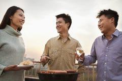 Amis buvant au-dessus d'un barbecue Images libres de droits