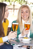 Amis buvant de la bière Images stock