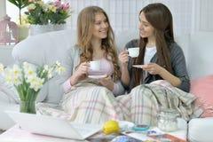 Amis buvant du café ou du thé Image stock