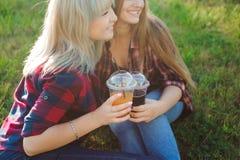Amis buvant du jus sur l'herbe verte en parc photo stock