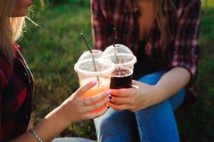 Amis buvant du jus sur l'herbe verte en parc photographie stock libre de droits