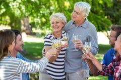 Amis buvant du vin blanc Photos libres de droits