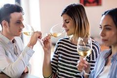 Amis buvant du vin par le compteur Image libre de droits