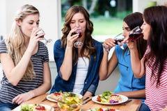 Amis buvant du vin rouge Photos libres de droits