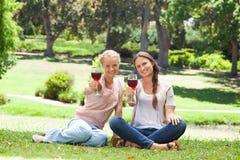 Amis buvant du vin rouge en parc Photographie stock