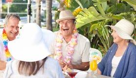 Amis buvant ensemble sous le soleil Image libre de droits