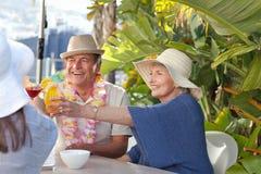 Amis buvant ensemble sous le soleil Photographie stock libre de droits