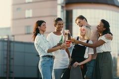 Amis buvant l'alcool sur le toit Photographie stock