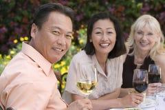 Amis célébrant avec du vin Images libres de droits