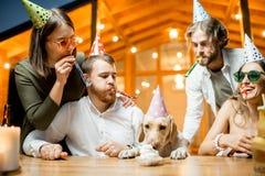 Amis célébrant l'anniversaire du ` s de chien Images stock