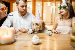 Amis célébrant l'anniversaire du ` s de chien Photo libre de droits