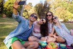 Amis cliquant sur le selfie tout en ayant le pique-nique Image libre de droits
