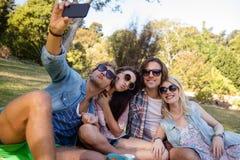 Amis cliquant sur le selfie tout en ayant le pique-nique Images stock