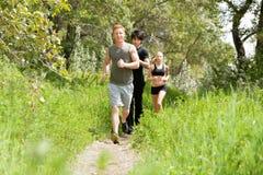 Amis courant dans la forêt Image stock